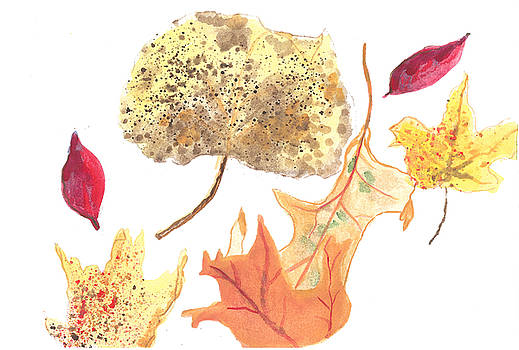 Autumn Leaves II by Haley Jula