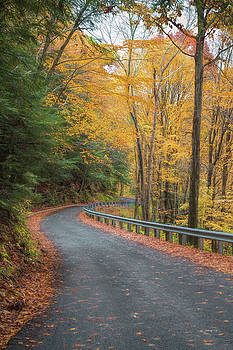 John M Bailey - Autumn Leaves
