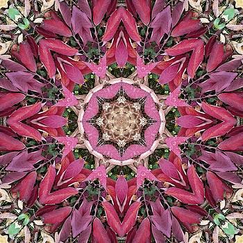 Autumn Leaves Kaleidoscope - White Ash by R V James