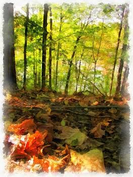 Autumn Leaves by Maciek Froncisz