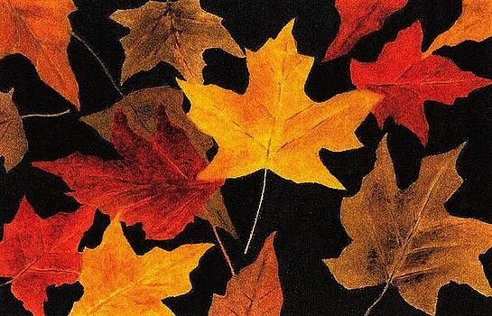 Autumn Leaves by Michael Vigliotti