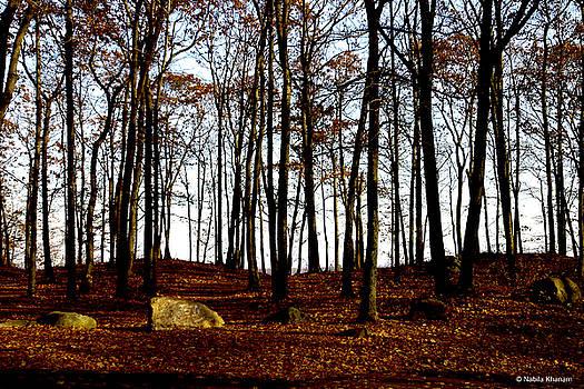 Autumn Leaves on Forest Floor by Nabila Khanam