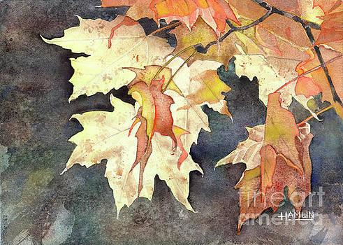 Autumn Leaves by Steve Hamlin