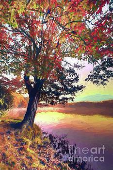 Dan Carmichael - Autumn Leaves Tree at Blue Ridge Lake AP