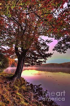 Dan Carmichael - Autumn Leaves Tree at Blue Ridge Lake