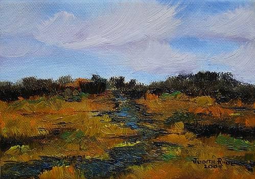 Autumn Marsh by Judith Rhue