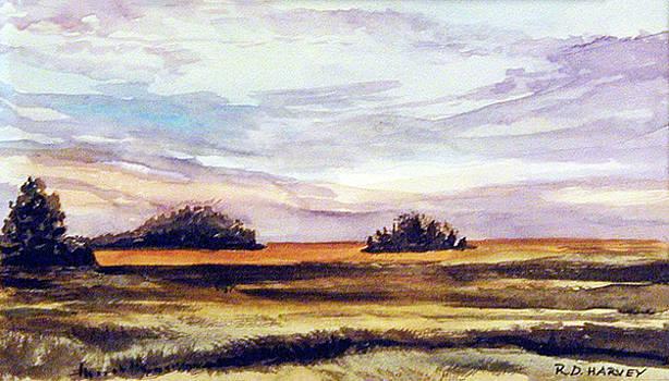 Autumn Marsh by Robert Harvey