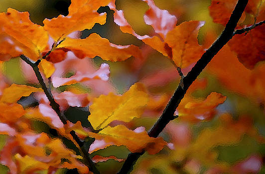 Autumn by Mary Gaines