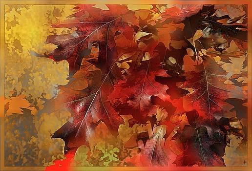 Autumn Memories  by Daniel Arrhakis