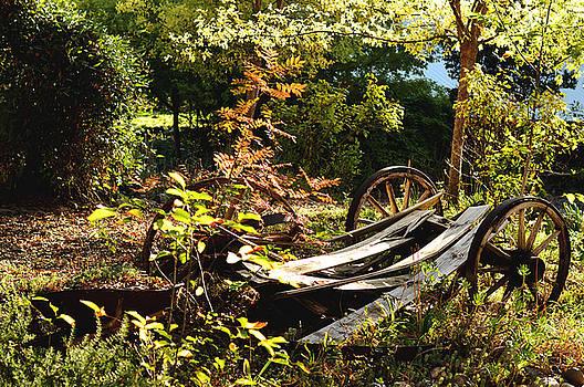 Autumn Memories by Pamela Patch