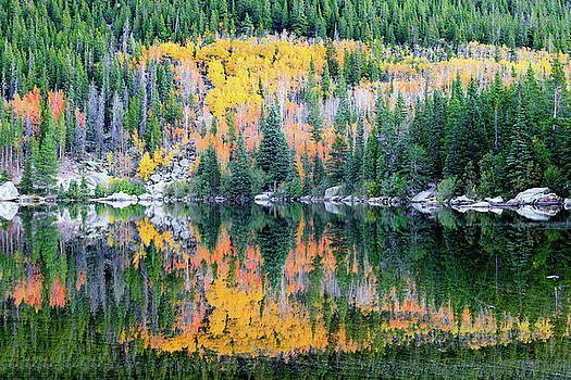 David Chandler - Autumn Mirror at Bear Lake