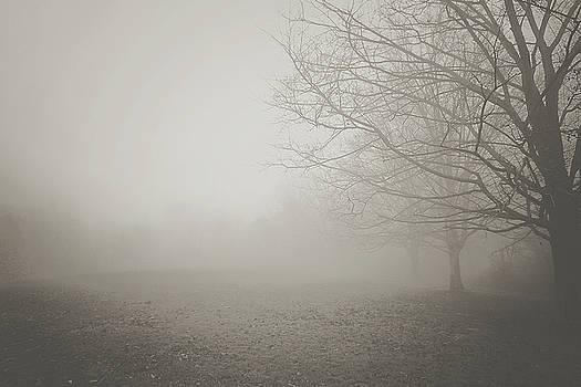 Autumn Mist 2 by Megan Swormstedt