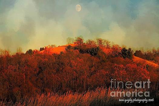 Tami Quigley - Autumn Moonrise