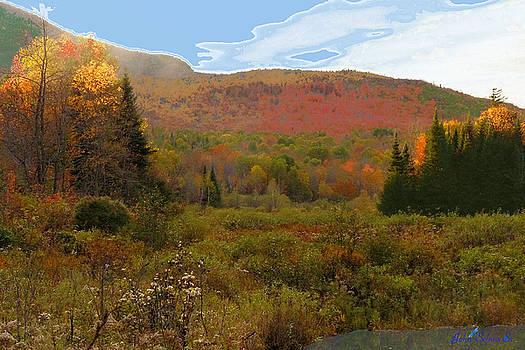 Autumn  Moose Bog by John Selmer Sr