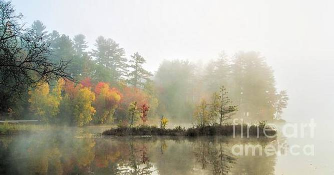 Autumn Morning 2 by Christopher Mace