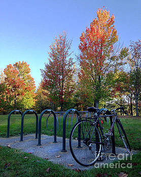 Felipe Adan Lerma - Autumn Morning Bicycle