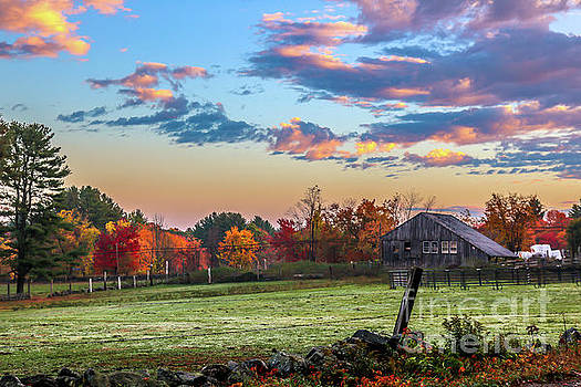 Autumn morning by Claudia M Photography