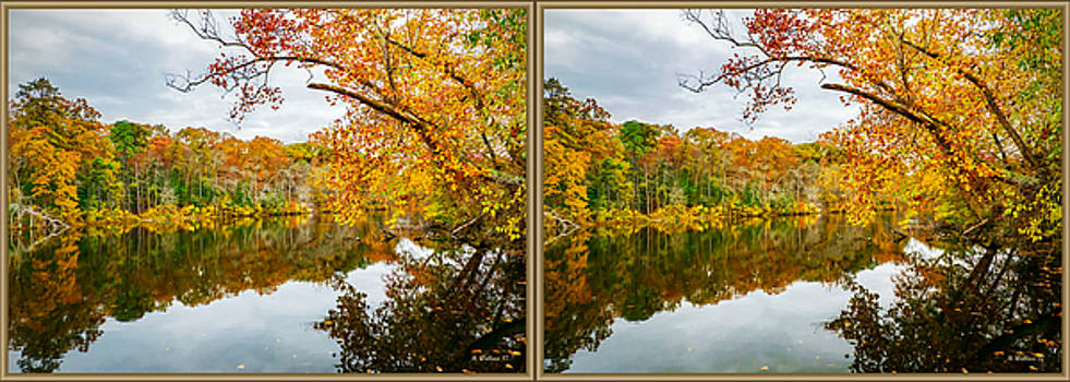 Autumn Nature - 3D Stereo X-View by Brian Wallace