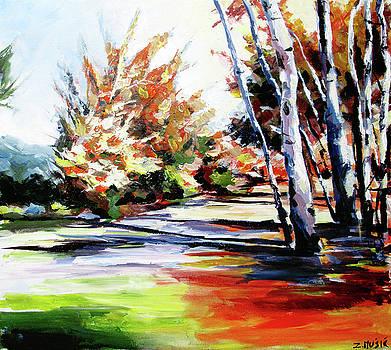 Autumn nature landscape  by Zlatko Music