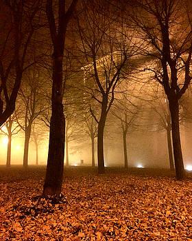 Autumn by Niki Mastromonaco
