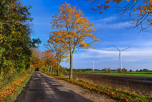 Autumn on a Back Road by Dmytro Korol