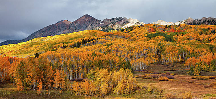 Autumn On Kebler Pass by Stuart Gordon
