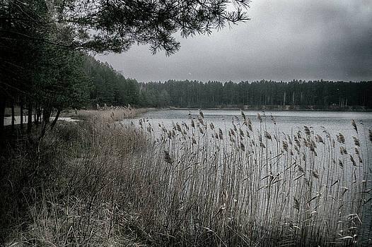 Autumn on lake. Oleshnya, 2016. by Andriy Maykovskyi