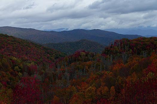 Autumn on the Cherohala Skyway by Kelly Kennon