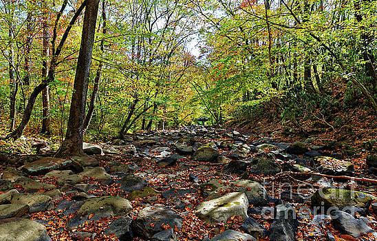 Paul Mashburn - Autumn On The Clifty Creek