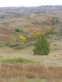 Autumn on the Grassy Badlands by Cris Fulton