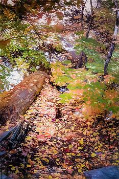 Autumn on the Mountain by Steve Kelley