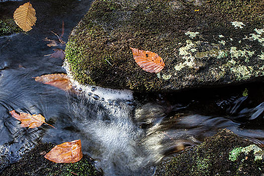 Autumn on the Rocks by Skyelyte Photography by Linda Rasch