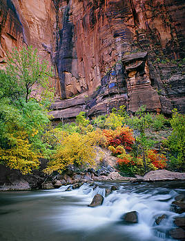 Nathan Mccreery - Autumn on the Virgin River