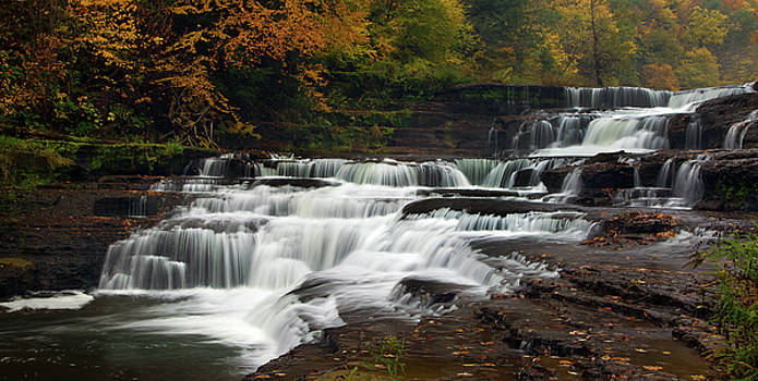 Autumn on the Wiscoy by Timothy McIntyre