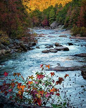 Autumn on Wilson Creek by Mike Koenig