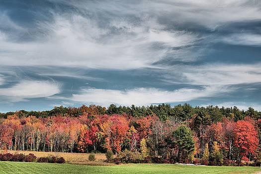 Autumn Orange by Don Pettengill