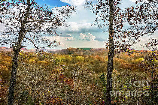 Autumn Overlook by Peggy Franz