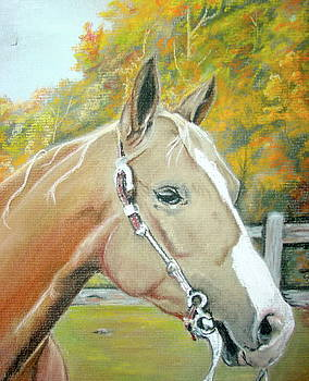 Autumn Palomino by Crystal  Harris-Donnelly