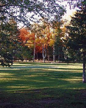Autumn Park by Deleas Kilgore