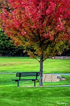 Autumn Park by Skip Tribby