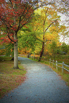 Autumn Path II by Scott Fracasso