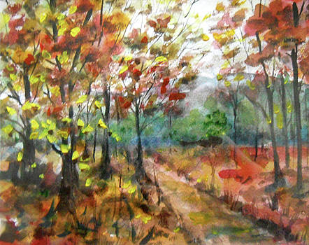 Autumn Path by Olga Kaczmar