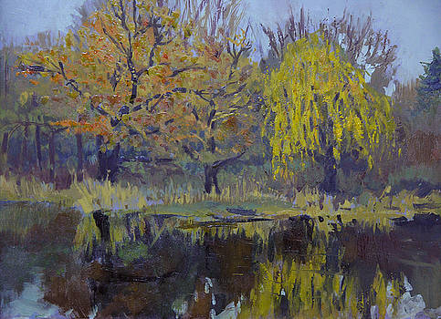 Autumn Pond by Anthony Sell