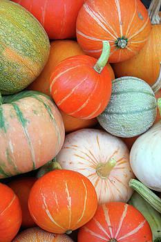 Autumn Pumpkins  by LesJardins Photography