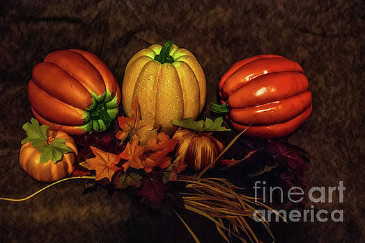 Autumn Pumpkins by Scott Hervieux