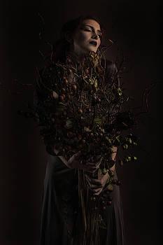 Autumn queen by Kaos Studios