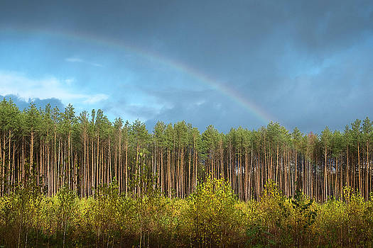 Autumn rainbow. Sunychne, 2016. by Andriy Maykovskyi