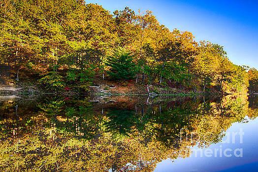 Autumn Reflection by Bill Frische