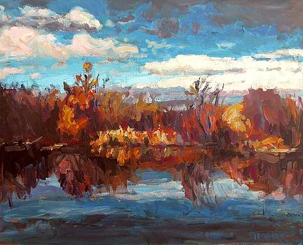 Autumn Reflection by Brian Simons
