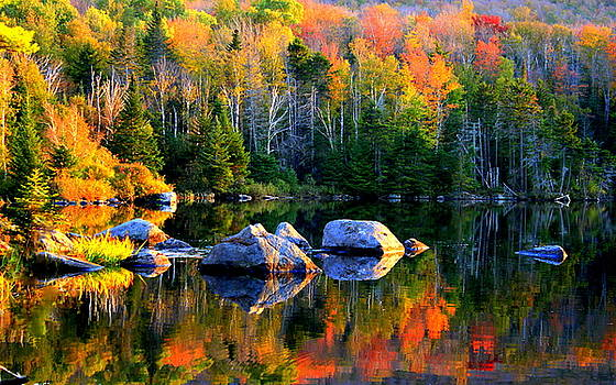 'Autumn Reflections - Noyes Pond' by Suzanne DeGeorge